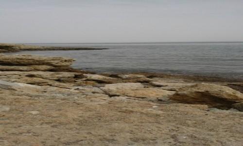 Zdjęcie SAHARA ZACHODNIA / Ad-Dachla-Wadi az-Zahab / Dakhla / Nad Atlantykiem