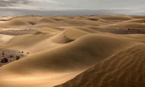 Zdjecie SAHARA ZACHODNIA / Al-Ujun-As-Sakija al-Hamra / gdzieś w piaskach pustyni / Ponuro