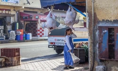 Zdjecie SAHARA ZACHODNIA / Laâyoune-Sakia El Hamra / Boujdour / Wezmę jeszcze to skrzydełko...