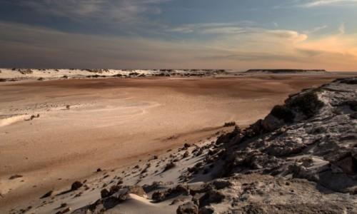 Zdjęcie SAHARA ZACHODNIA / Ad-Dachla-Wadi az-Zahab / Cintra / Dno zatoki