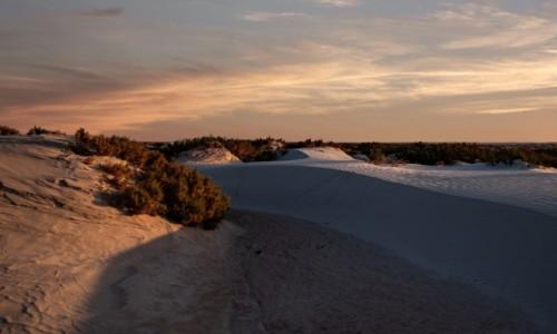Zdjecie SAHARA ZACHODNIA / Ad-Dachla-Wadi az-Zahab /  Cintra / Wieczór nad zatoką