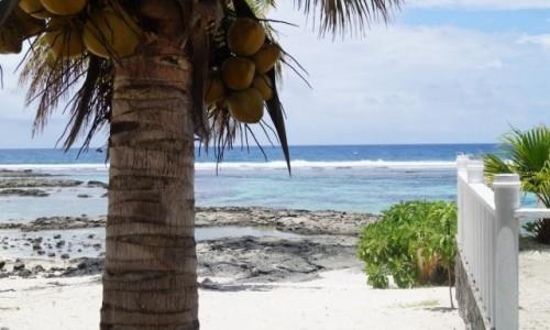 Zdjęcie SAMOA / Samoa / plaża / samoa - plaża