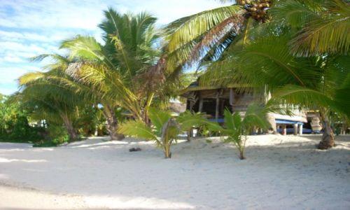 Zdjęcie SAMOA ZACHODNIE / Savaii, Tanu beach / Samoa / Fale do spania