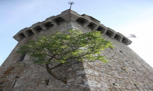 Zdjecie SAN MARINO / San Marino / Mount Titano / Jesion na wieży zamku Montale