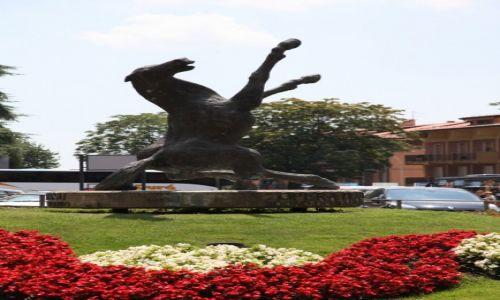 Zdjęcie SAN MARINO / San Marino / Palazzo Pergam  / Tańczący koń, rzeźba