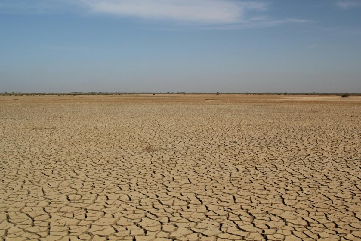 Zdjęcia: Sahel, Sahel, Nie ma wody na pustyni, SENEGAL