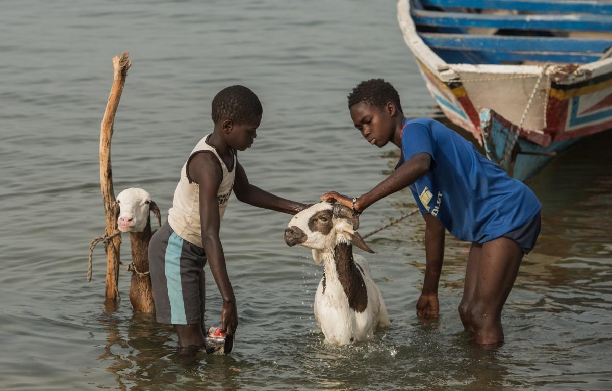 Zdjęcia: okolice Ziguinchor, Casamance, Higiena w domu ... i zagrodzie ;-), SENEGAL