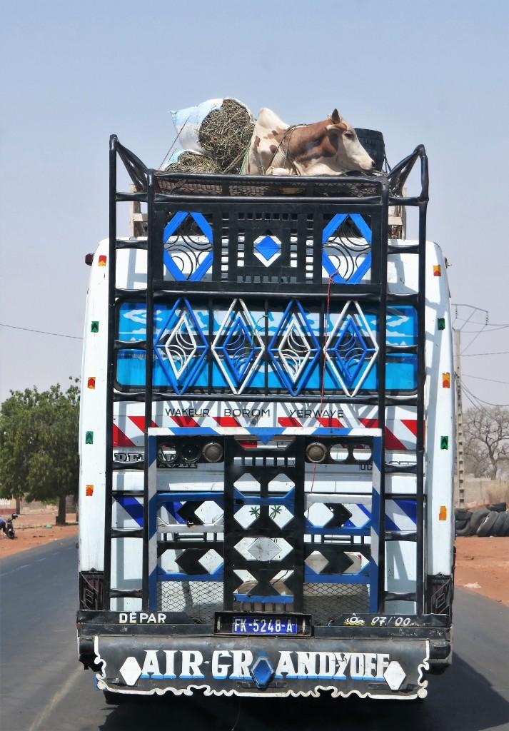 Zdjęcia: Gdzieś po drodze, Południe kraju, Autostopowiczka, SENEGAL