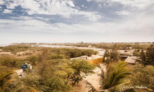 SENEGAL / Senegal / Senegal / African Road Trip - Zebra Bar w Senegalu