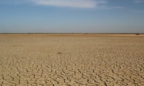 Zdjęcie SENEGAL / Sahel / Sahel / Nie ma wody na pustyni