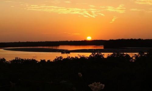 Zdjecie SENEGAL / Delta du Saloum. / Park Narodowy Delta du Saloum. / Spokój nad rzeką Saloum