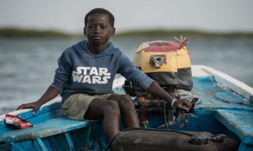 Zdjecie SENEGAL / Delta du Saloum / Delta du Saloum / Dookoła Afryki 😁