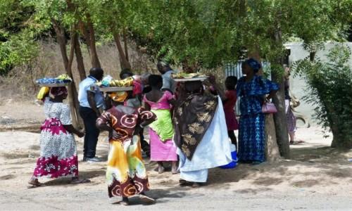 SENEGAL / Południe kraju / Kolda / Scenki uliczne - zbiegowisko