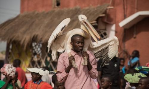 Zdjecie SENEGAL / Casamance / Kafountine / Niebanalne nakrycie głowy 😁