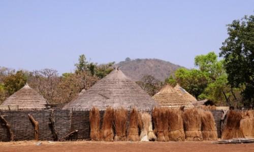 SENEGAL / Południowy wschód Senegalu / Wioska Bassari / Nowoczesność w domu i w zagrodzie ;)