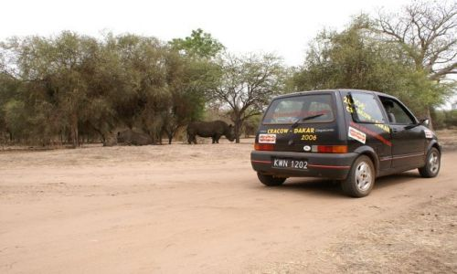 Zdjecie SENEGAL / brak / Park Narodowy Bandiaga / Senegalskie Safari