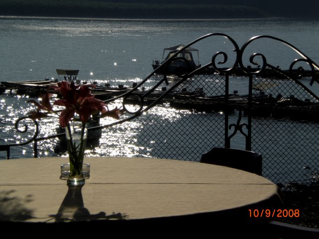 Zdjęcia: nad Dunajem, Novy Sad, śniadanie nad dunajem, SERBIA