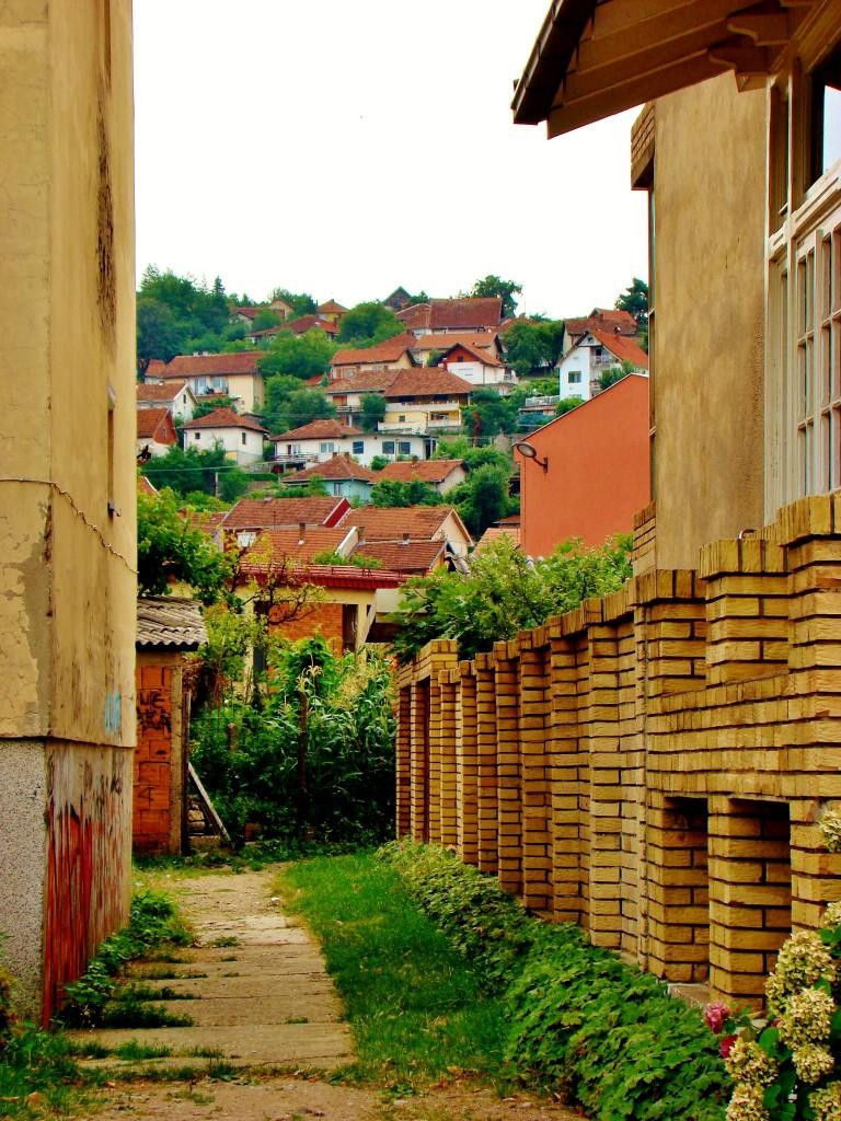 Zdjęcia: Donji Milanovac, Borski,Park Narodowy Djerdap, Donji Milanovac, SERBIA
