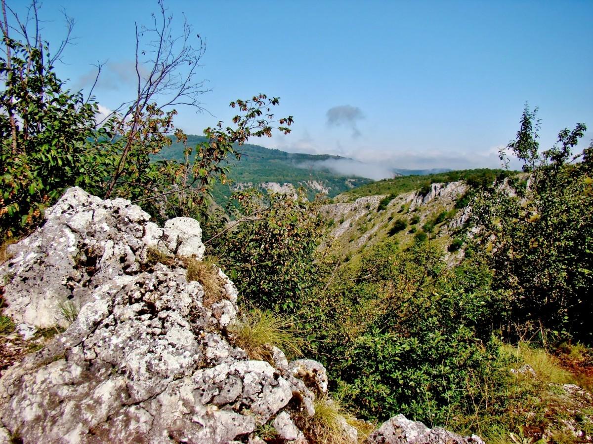 Zdjęcia: Sjenica, płd.-zach.Serbia, Kanion rzeki Uvac, SERBIA