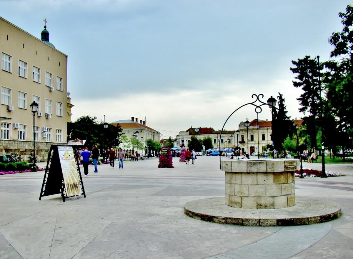 Zdjęcia: Negotin, Borski, Negotin-studnia na placu Stanojevica, SERBIA