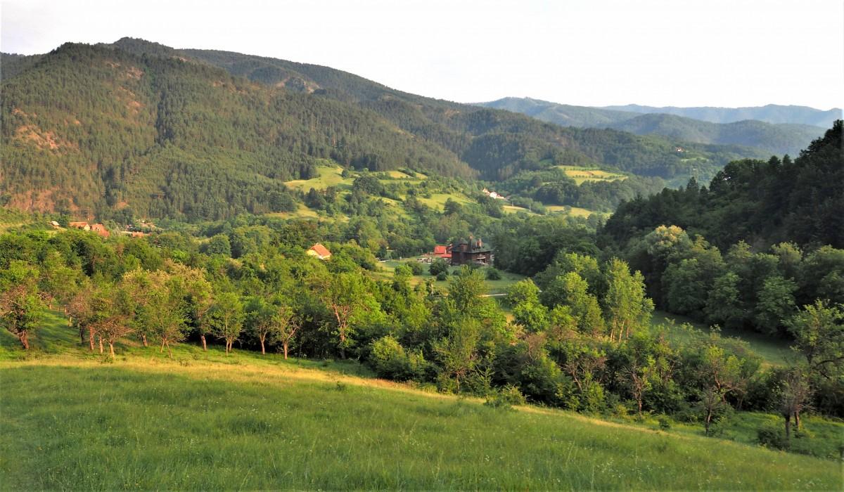 Zdjęcia: okolice Mokrej  Gory, Zlatibor, zielona Serbia...., SERBIA