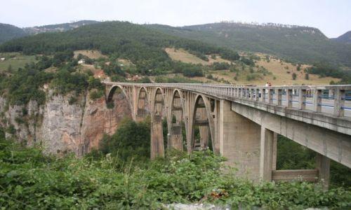 Zdjecie SERBIA / brak / Durmitor / Most na Tarze