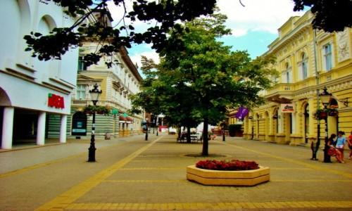 Zdjecie SERBIA / Vojvodina / Subotica / Subotica-ulica