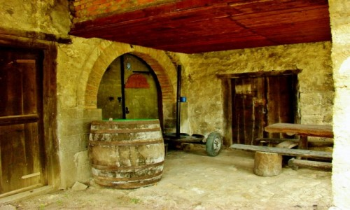 Zdjecie SERBIA / Rajac / Rajacke Pivnice / Rajacke Pivnice-tu leżakuje najlepsze serbskie wino