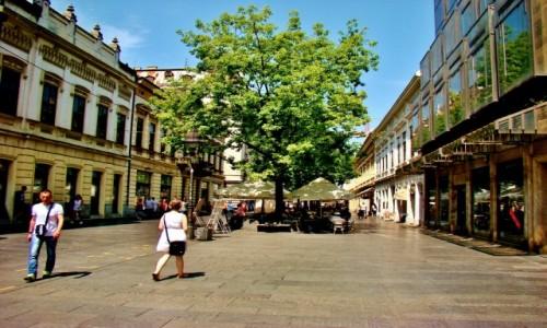 Zdjecie SERBIA / - / Belgrad / Belgrad-deptak