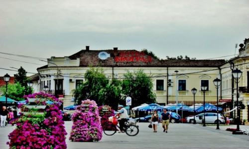 Zdjęcie SERBIA / Borski / Negotin / Negotin-hotel Belgrad