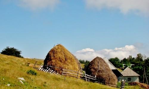Zdjęcie SERBIA / płd.-zach.Serbia / Sjenica / W pobliżu kanionu rzeki Uvac
