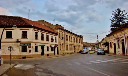 Zdjęcie SERBIA / Vojvodina / Sremski Karlovci / Sremski Karlovci-ulica Stratimirowicia