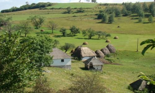 SERBIA / płd.-zach.Serbia / Sjenica / W pobliżu kanionu rzeki Uvac