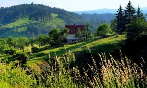 SERBIA / Zlatibor / okolice Mokrej Gory / między górami...
