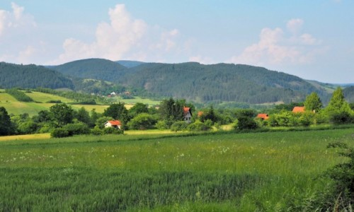 Zdjęcie SERBIA / Zlatibor / - / po drodze...