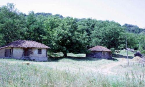 Zdjecie SERBIA / Okolice Podgorica / wieś / widok