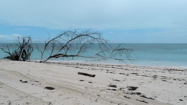 Zdjęcia: Denis Private Island, Inner Islands, nie zawsze świeci słońce..., SESZELE