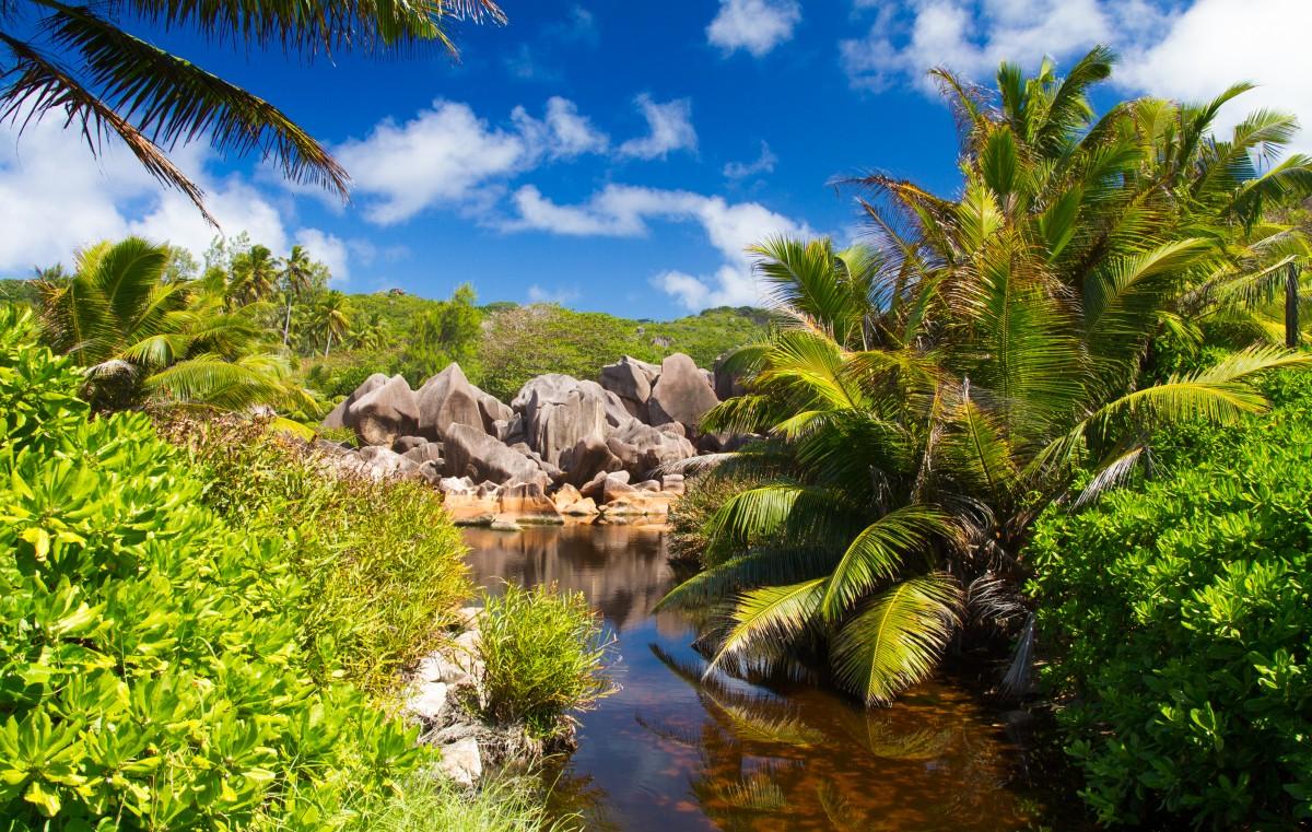 Zdjęcia: okolice Grand Anse, La Digue, Seszele, SESZELE