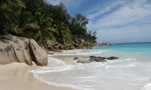 SESZELE / Praslin / Anse... / Gdzieś na Oceanie Indyjskim - konkurs