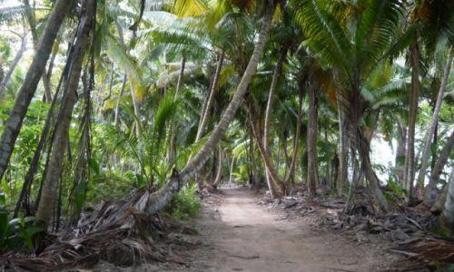 SESZELE / Denis Private Island / .. / konkurs
