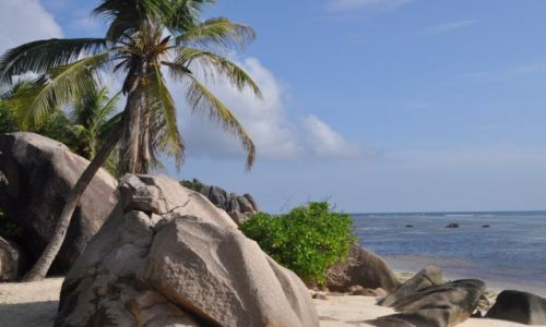 Zdjęcie SESZELE / Ocean Indyjski / Seszele / Seszele plaża