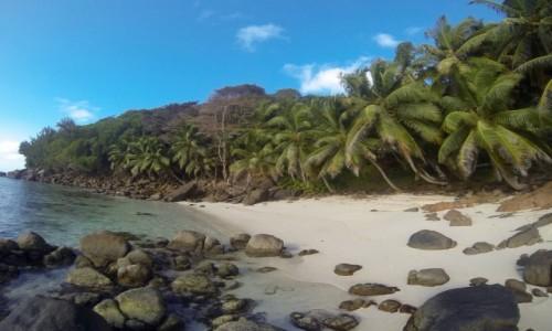 Zdjęcie SESZELE / Wyspa Mahe / Anse Parnel / bezludna plaża