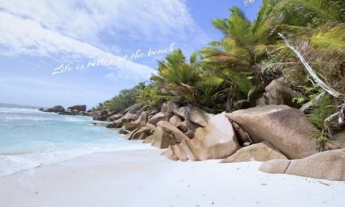 Zdjecie SESZELE / La Digue / Anse Coco / Coco Beach