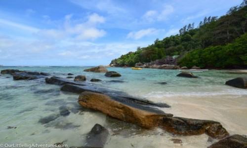 Zdjęcie SESZELE / Mahe / Anse Gouvernement / plaża