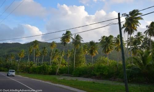 Zdjęcie SESZELE / Mahe / Anse Royale / long way in paradise