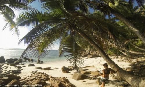 Zdjęcie SESZELE / Mahe / plaża / plaża idealna odnaleziona