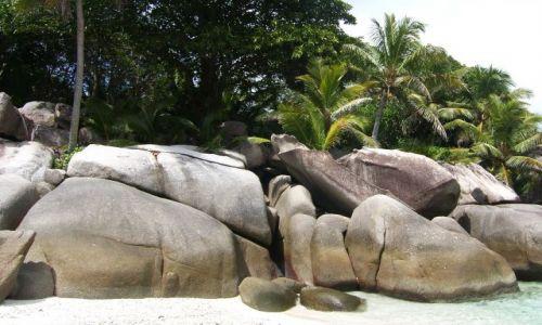 Zdjecie SESZELE / Coco Island / wyspa / Plaża ...