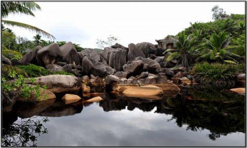 Zdjęcie SESZELE / ladigue / jeziorko / raj na ziemi