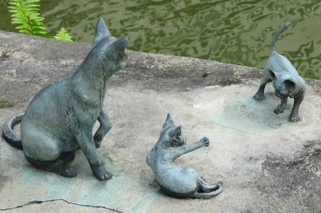 Zdjęcia: u, Singapur, zabawy kotów w patynie, SINGAPUR