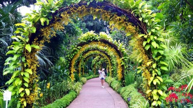 Zdjęcia: Ogród Botaniczny, Singapur, Kwietne łuki, SINGAPUR